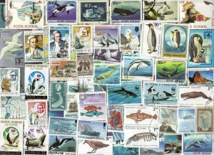 100 All Different  ANTARCTICA THEME STAMPS