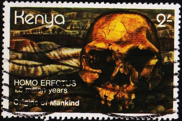 Kenya. 1982 2s S.G.226 Fine Used