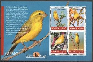 UG013 2014 UGANDA BIRDS CANARY BIRD WATCHING FAUNA #3285-3288 MNH