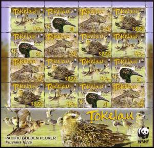 Tokelau Birds WWF Pacific Golden Plover Sheetlet of 4 sets SG#382-385 SC#349-352