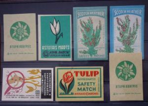 Match Box Labels! flora flower flowers nature russia GJ9