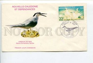 292292 New Caledonia 1978 FDC Bird Sterna Sumatrana Raffles Black-naped Tern