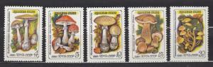 Russia - Soviet Union - 1986 Mushrooms Sc# 5454/5458 - MNH (2654)
