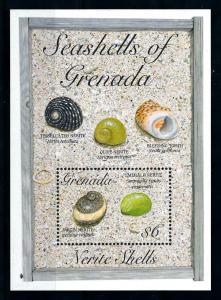 [99661] Grenada 1993 Marine Life Sea shells Souvenir Sheet MNH