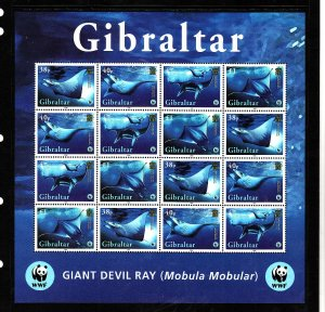 Gibraltar-Sc#1037-unused NH sheet-Marine Life-Giant Devil Ray-2005-