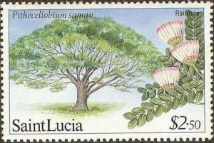 St. Lucia - #652 -MNH- 1984 - Rain Tree - $2.50 - SCV-1.90