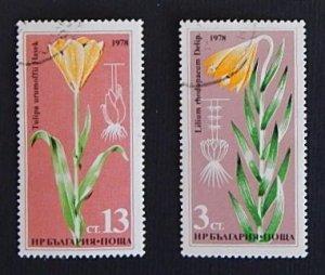 Flowers (R-317)