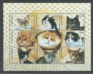 PK040 GUYANA FAUNA PETS CATS 1KB MNH STAMPS