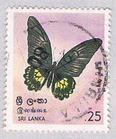 Sri Lanka 534 Used Butterfly 1978 (BP30925)