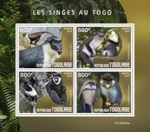 TOGO - 2019 - Monkeys in Togo - Perf 4v Sheet - MNH
