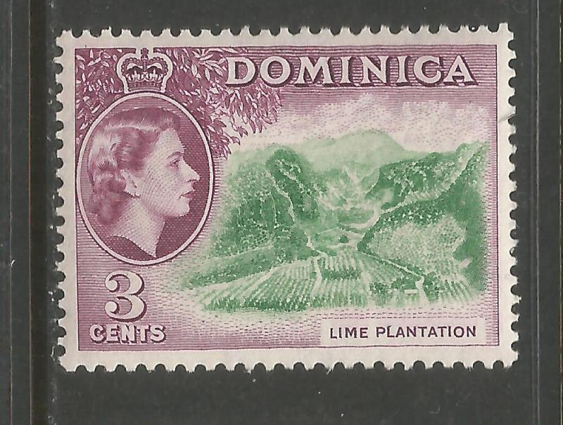 DOMINICA 145 MNH LIME V902-11