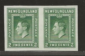 NEWFOUNDLAND  SC# 245a   IMPERF PAIR  VF/MNG