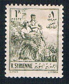 Syria 378 Used Farm Workers (BP09210)