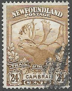 Newfoundland Scott Number 125 F Used