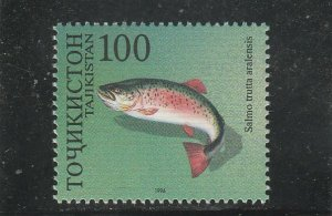 Tajikistan  Scott#  91b  MNH  (1996 Brown Trout)