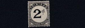 TRINIDAD  1905 - 06  SG   D11  2D    SLATE BLACK  MH