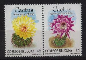 flower plants cacti cactus notocactus ottonis URUGUAY Sc#1870 MNH STAMP
