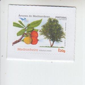 2019 Portugal Strawberry Tree SA   (Scott NA) MNH