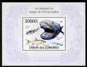 Comoro Islands 2010 Endangered Animals of the Indian Ocea...
