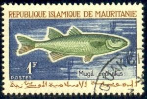 Fish, Striped Mullet, Mauritania stamp SC#177 used
