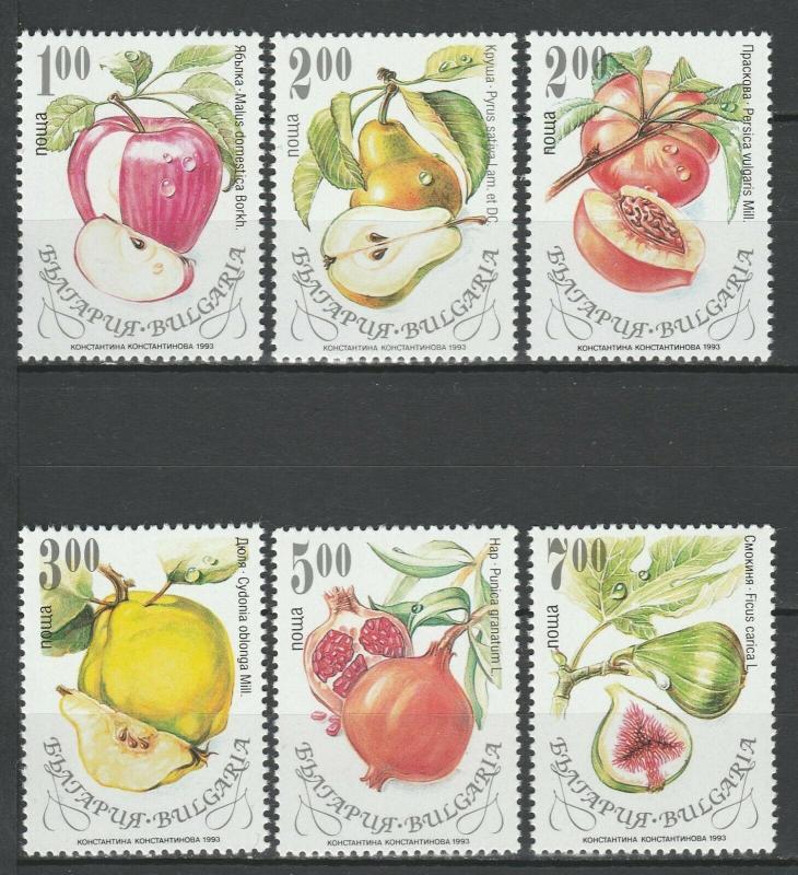 Bulgaria 1993 Fruits 6 MNH stamps