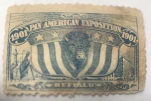 1901 Pan-Am Expo Souvenir Stamp MNG