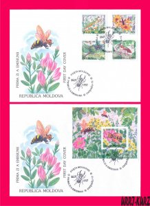 MOLDOVA 1997 Nature Fauna Rare Insects Ant Beetle Dragonfly Mantis Wasp FDC