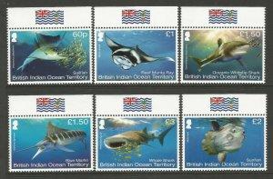 British Indian Ocean Territory (BIOT) 2017 Sharks Set MNH unmounted mint