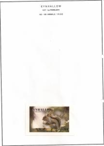SCOTLAND - EYNHALLOW - 1977 - Animals, Squirrel - Souv Sheet - MLH