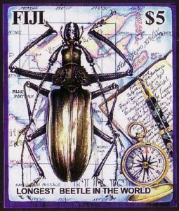 Fiji Longest Beetle in the World MS SG#MS1216
