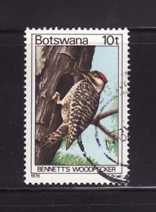 Botswana 204 U Bennett's Woodpecker, Bird (C)