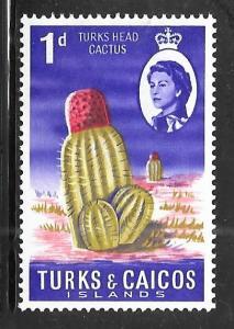 Turks and Caicos 158: 1d Turk's Head Cactus, MH, VF
