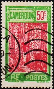 Cameroun. 1925 50c. S.G.80 Fine Used