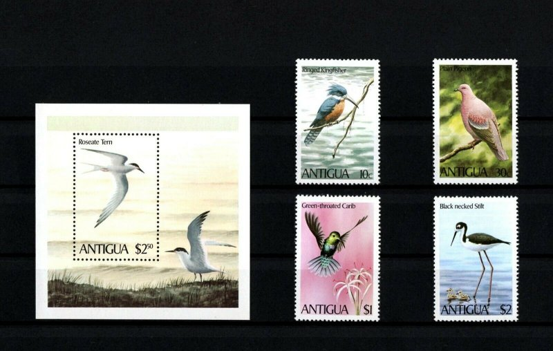 ANTIGUA - 1980 - BIRDS - KINGFISHER - STILT - CARIB - TERN + MNH SET + S/SHEET!