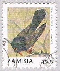 Zambia Bird 50 (AP112720)