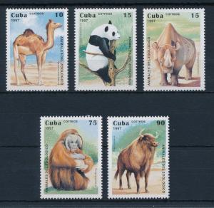 [29185]  1997 Wild Life Mammals from Zoo MNH