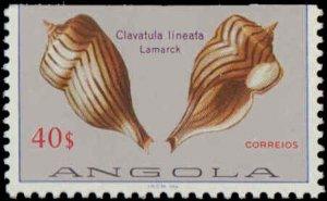 Angola #617-630, Complete Set(14), 1981, Sea Shells, Never Hinged