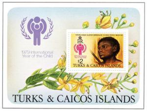 Turks & Caicos 1979 IYC Ptg.by Van Dyck SS MNH Sc#390