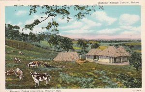 Cuba Postcard Havana Cuban Landscape,Country Huts Unused