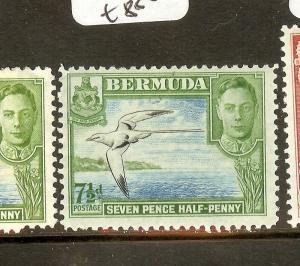 BERMUDA (B0602BB) KGVI  BIRD  SG114C  MOG