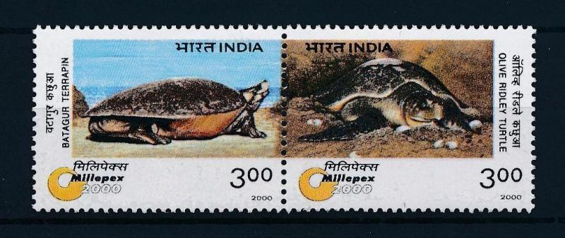 [38690] India 2000 Reptiles Turtles MNH