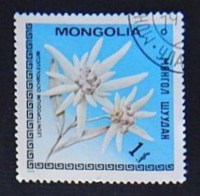 Flowers, Mongolia, 1 Menge (R-281)