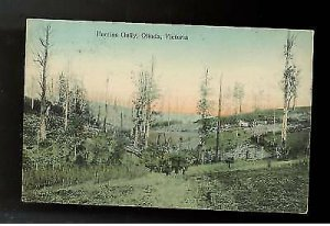 1910  Australia Victoria Postcard Cover Perrins Gully