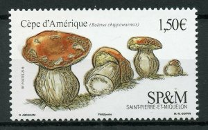 Saint-Pierre & Miquelon SP&M Mushrooms Stamps 2019 MNH Boletus Fungi 1v Set