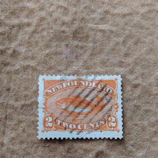 Newfoundland 48 XF, CV $19.50