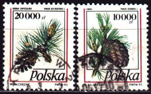 Poland. 1993. 3456-57. Pine cones, flora. USED.