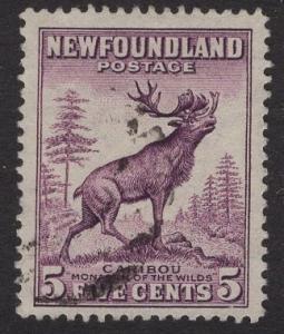 Newfoundland  #191  used  1932   5c caribou