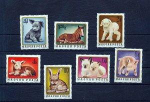 HUNGARY 1974 Animals Pets Set MNH (H64s