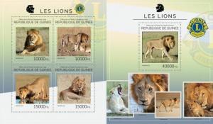 Guinea 2014 wild cats leo lions klb+s/s MNH