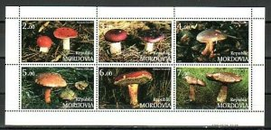 Mordovia, 1999 Russian Local. Mushrooms on a sheet of 6.